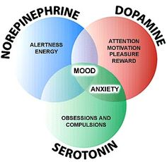 BrainSmart Mood Increases Serotonin